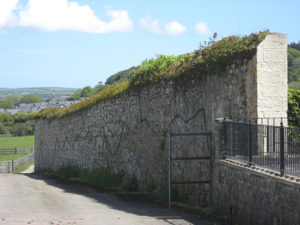 Original wall, Ballynamona farmstead, near Timoleague, County Cork