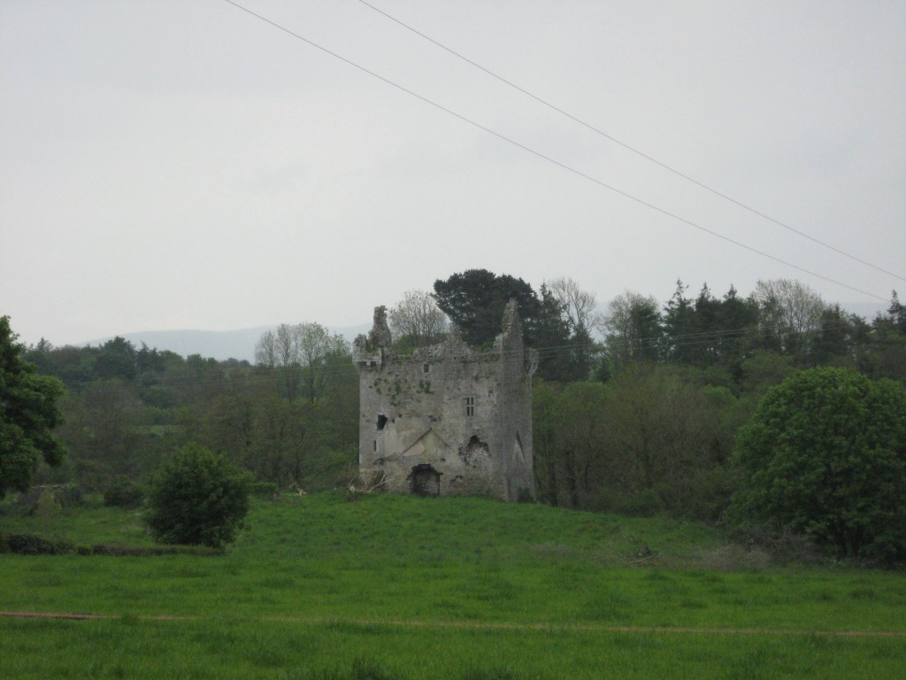 Ballynamona I, County Cork