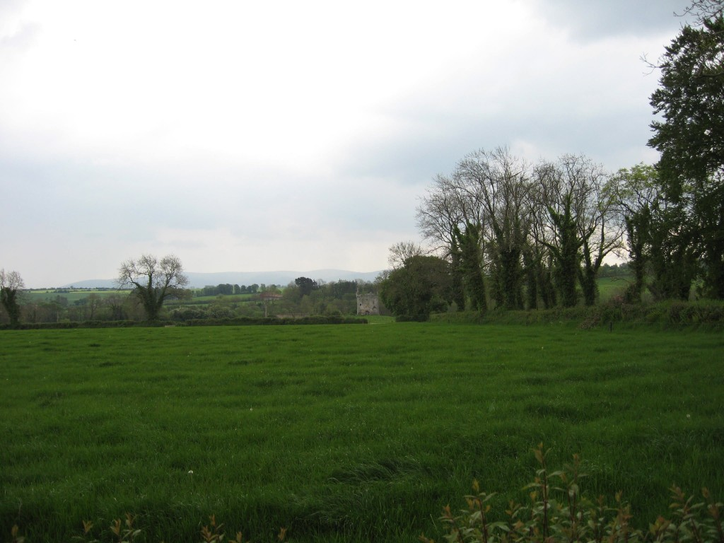 Ballynamona I (first view), northeast of Mallow, County Cork