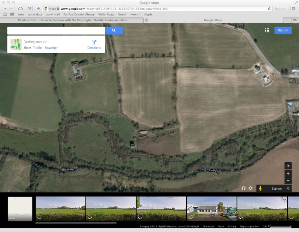 Ballynamona I from a satellite (Google Maps)