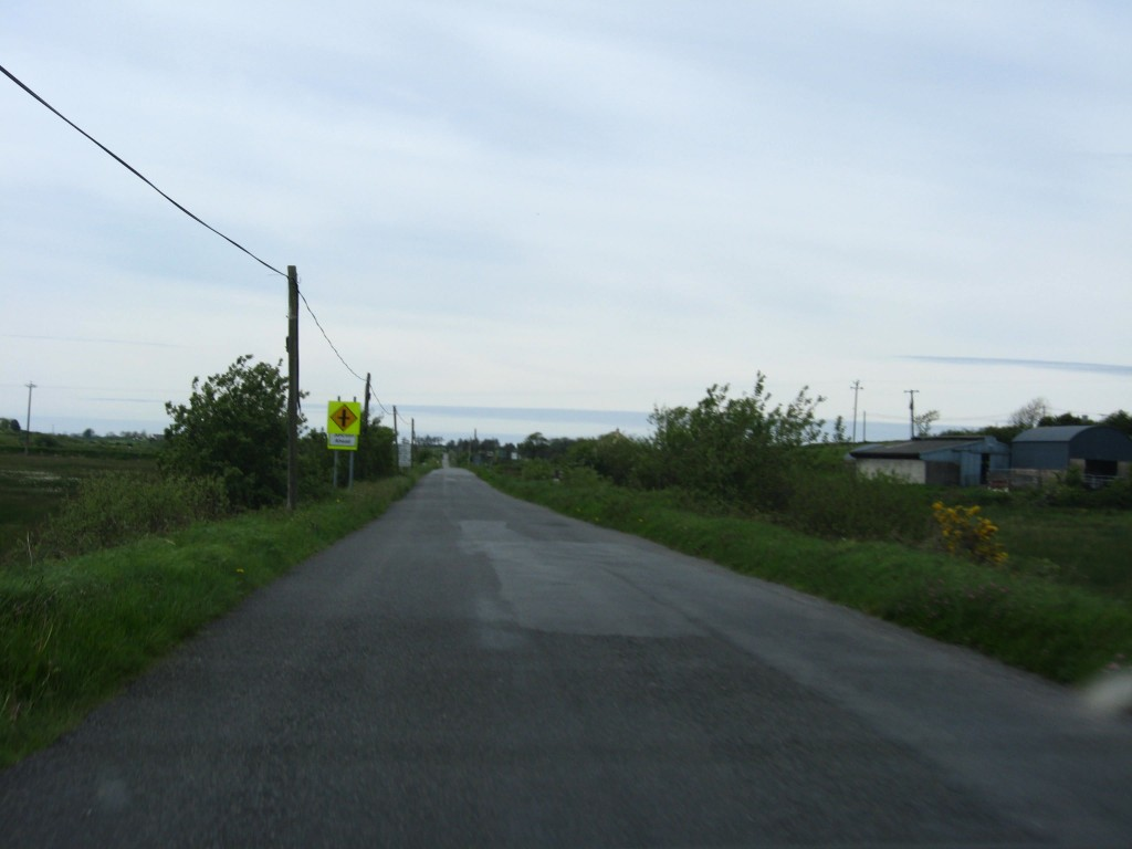 Approaching the Shannon, Ennis-Kilrush Road, County Clare