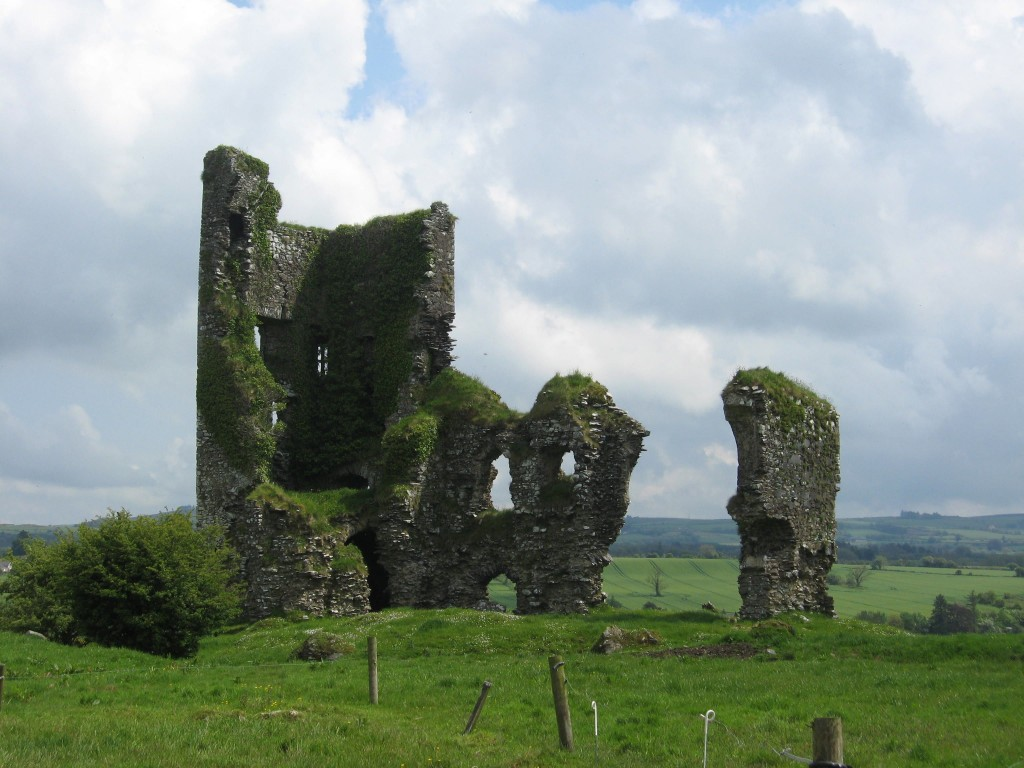 Unknown tower house, County Cork